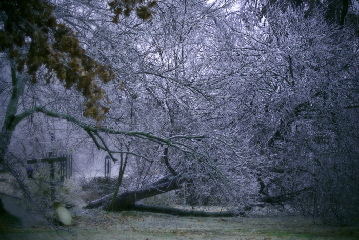 10. And to keep on the wild weather trend...a freak snow/ice storm.