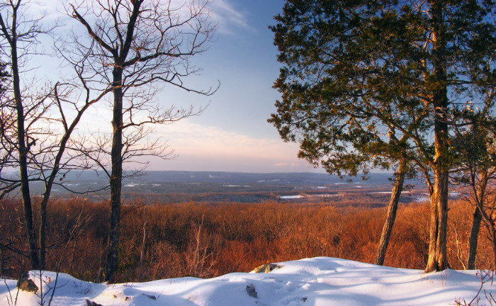 1. Our state parks look stunning covered in snow.