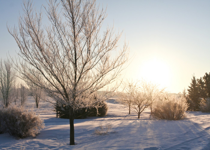 8. The fields surrounding St. Cloud are wonderful in the winter. Check them out for a rural winter adventure.