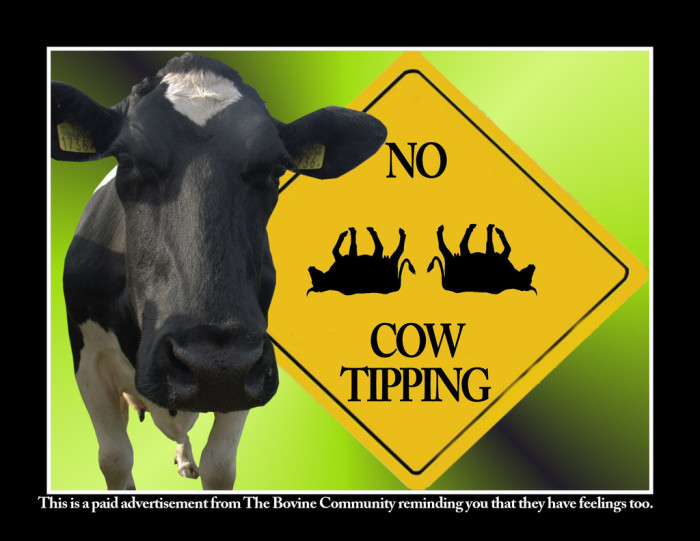 1.  We don't go cow tipping.