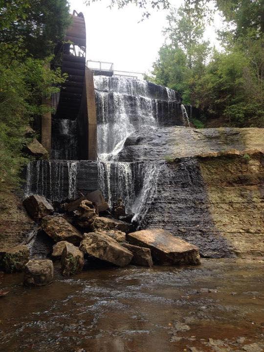 3. Dunn's Falls