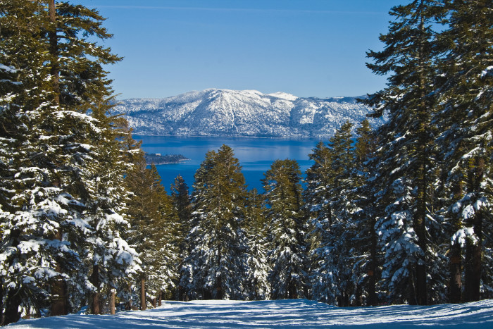 13. These snow-covered trees create such a magnificent winter view of Lake Tahoe.