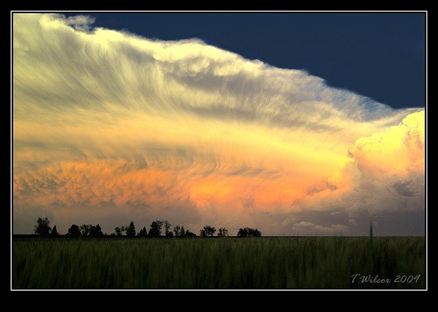 5. This almost heavenly orange and cream wave signals the beginnings of some dangerous weather in tornado alley.