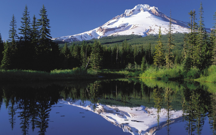 6. Oregon's stunning scenery.