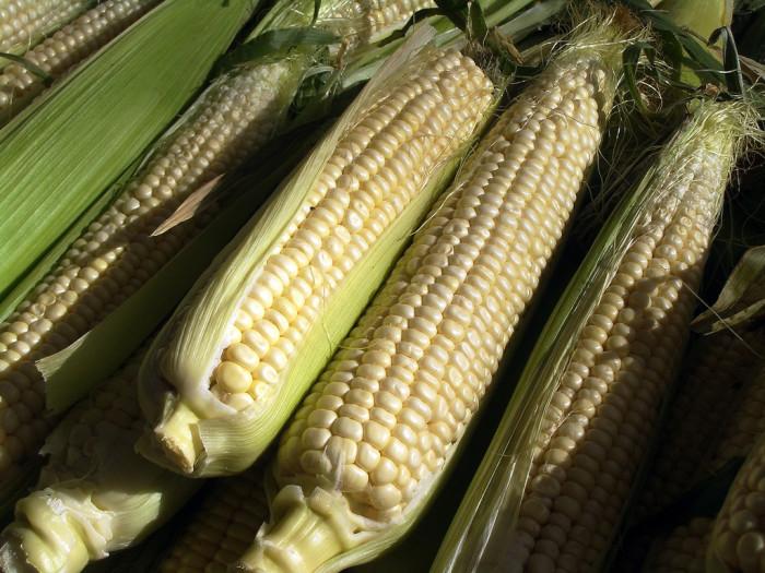 5. People stop eating sweet corn.