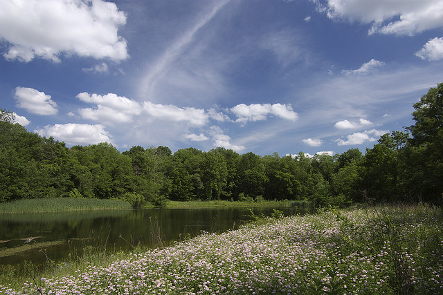 10. This is a gorgeous picture of the Kokiwanee Nature Preserve in Wabash County. There is something mystical about the sky.
