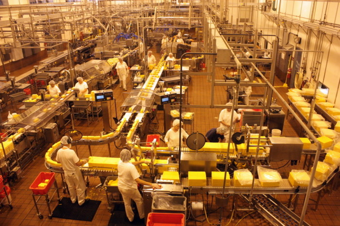 7. The Tillamook Cheese Factory produces 171,000 pounds of cheese each day.