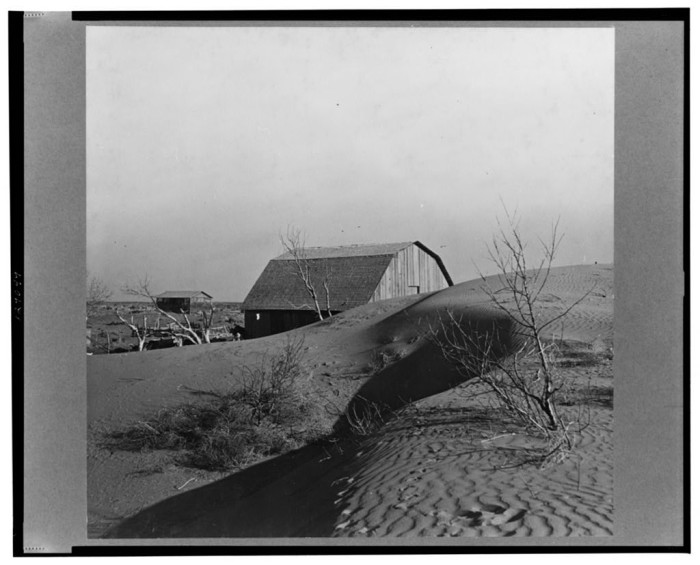 """6. """"The winds of the """"dust bowl"""" have piled up large drifts of soil against this farmer's barn near Liberal, Kansas."""" (1936)"""