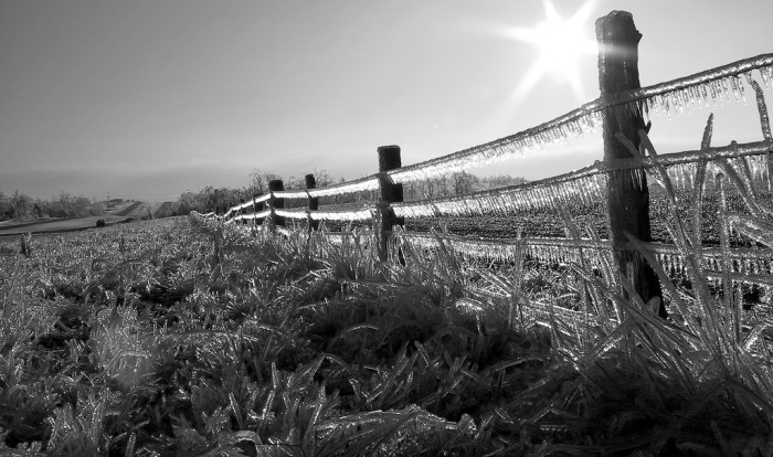 3.	Icy fence near Kingsville