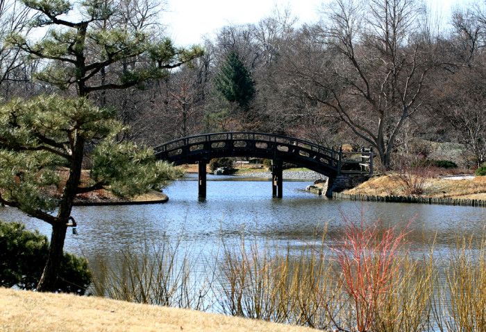 4.	Visit the Missouri Botanical Gardens.
