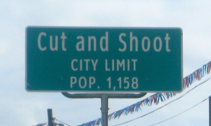 12) Cut and Shoot