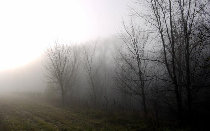 8. Eerie morning on the K-10.