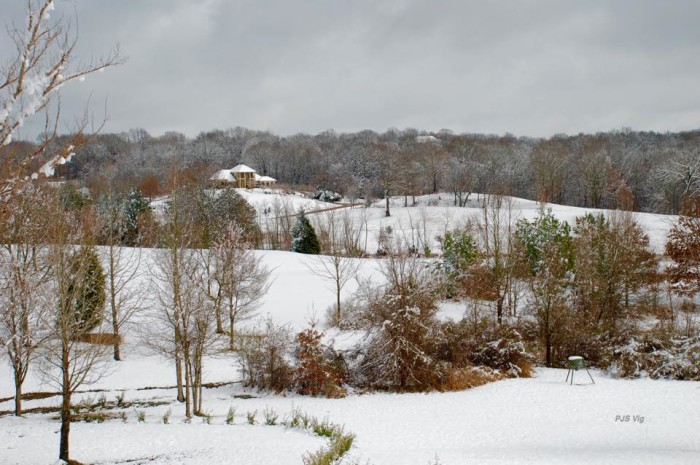 4. A blanket of snow makes Mississippi even more beautiful.