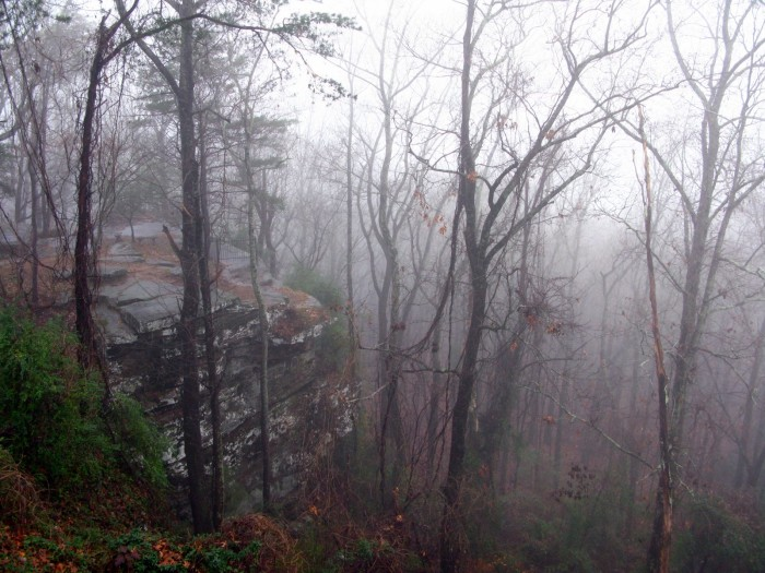 4. A thin veil of fog drapes over Shades Mountain in Bluff Park.