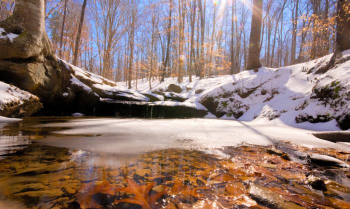 4. Simply beautiful frozen stream around Johnson Lake.