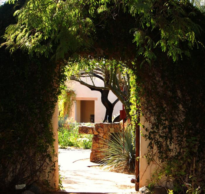 5. Peaceful walk in a garden