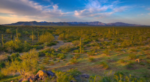 Most People Don't Know These 10 Treasures Are Hiding In Arizona