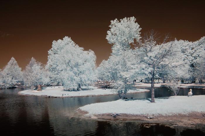 Houston Texas Snow >> 14 Beautiful Winter Scene In Texas