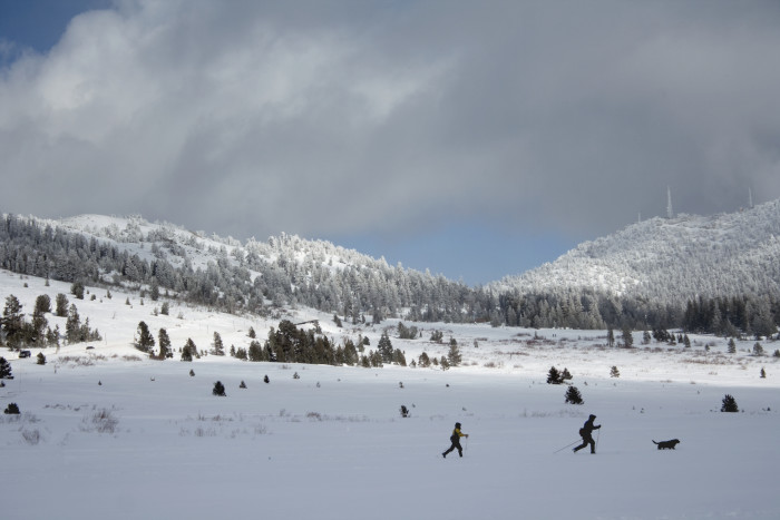 4. Mount Rose Meadows is a wonderful place for skiing. Not to mention, the scenery the snow creates is indescribable.