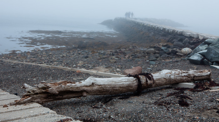 15. Craggy coastlines can be the most beautiful in the fog. Especially all the way up in Lubec.