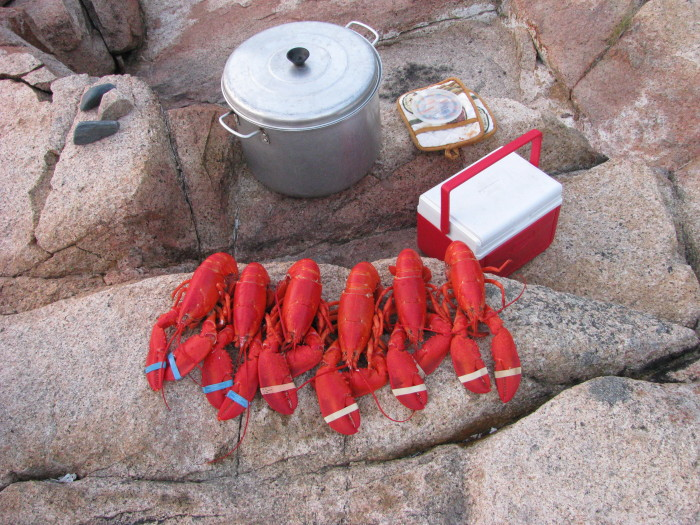2. Which means an awesome lobster picnic outside.