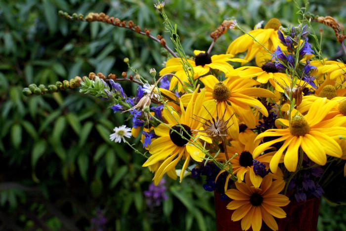 7) A bouquet of Black-Eyed Susans.