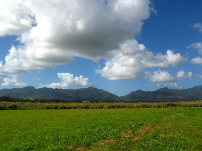 5) Wahiawa, Oahu