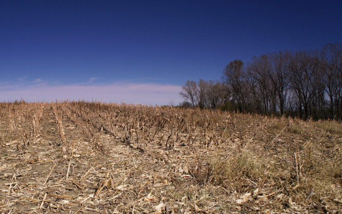 8. USA Today reports that groundwater is disappearing beneath Kansas cornfields.