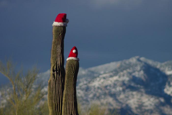 8. Tucson