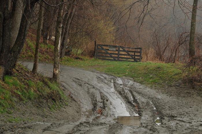 5.  Perfect roads