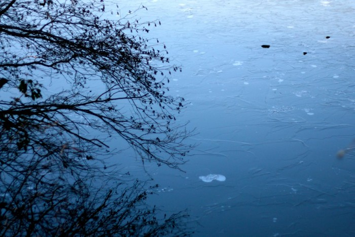 5. Frozen River