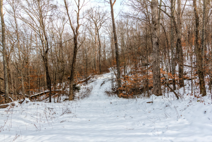 6. This beautiful snow scene was captured at the Walls of Jericho in January 2011.