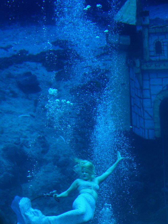 10. And if the Little Mermaid were real, she would surely be chilling at Weeki Wachee, trying to blend in. Where else is she going to find a job?