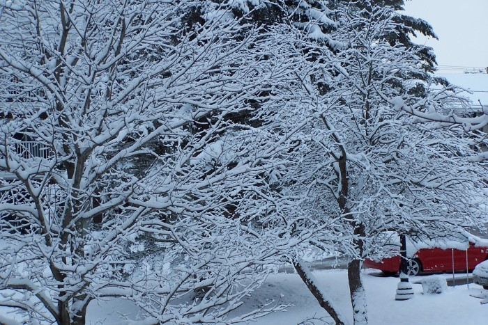 3. Snow!