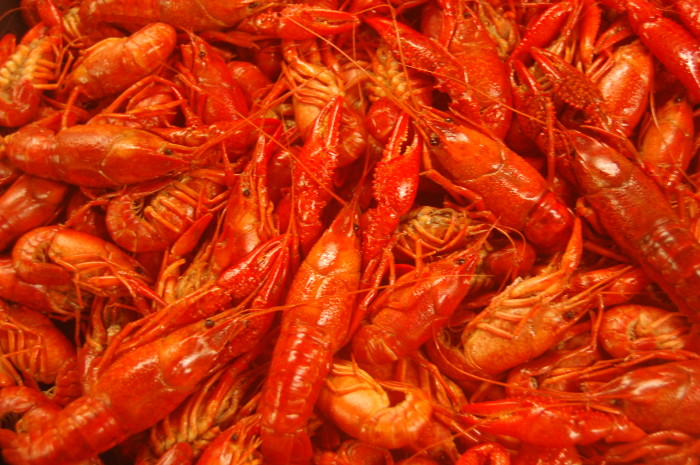 8. When you live in Louisiana, you eat crawfish 24/7.