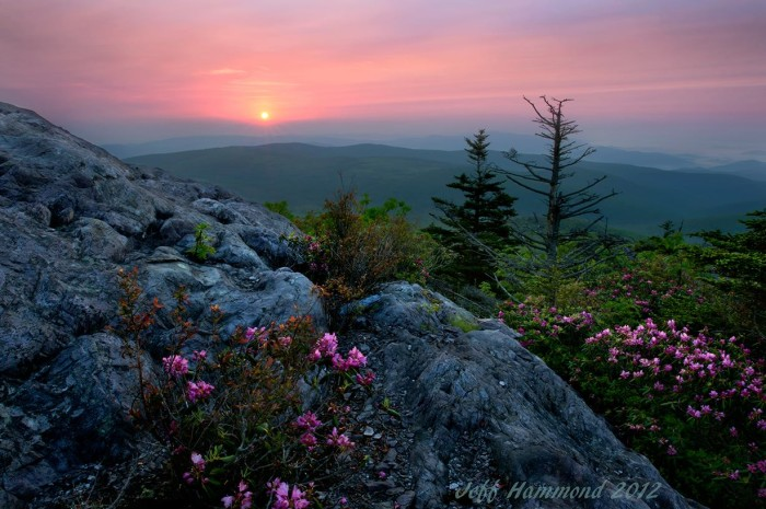 6. A back country sunrise at Grayson Highlands State Park.