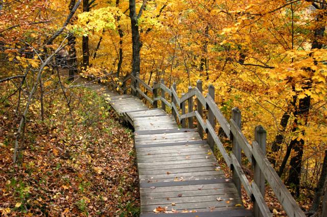 6. Take a relaxing walk, or hike.
