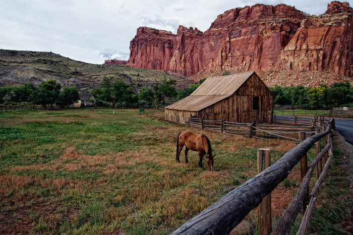 6. Capitol Reef National Park'