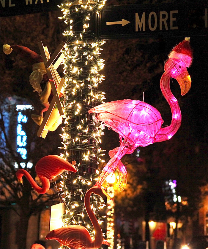 9.  And glowing flamingos