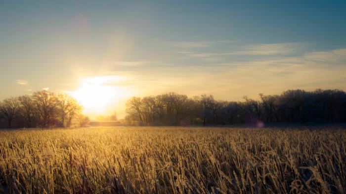 6. 365 stunning sunrises.
