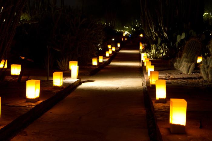 3. Las Noches de las Luminarias (Desert Botanical Garden, Phoenix)