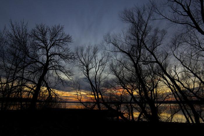 14. Goodnight, Lake Shore.