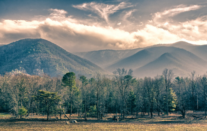 9. Shifting seasons in the Great Smoky Mountains.