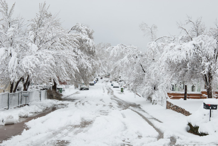 9 Places to See Snow in Arizona