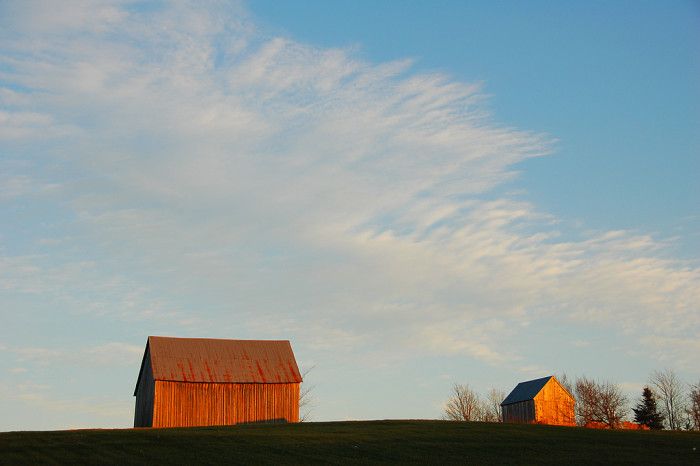 7.  Barns on the hill