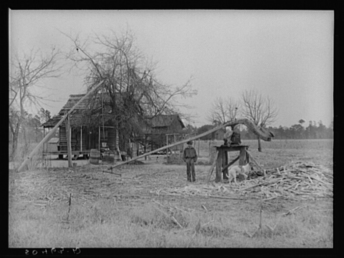 7. This home in Summerville, SC has a cane grinder in the front yard. 1939.
