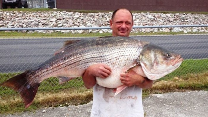 6.  This guy caught a record breaking fish!