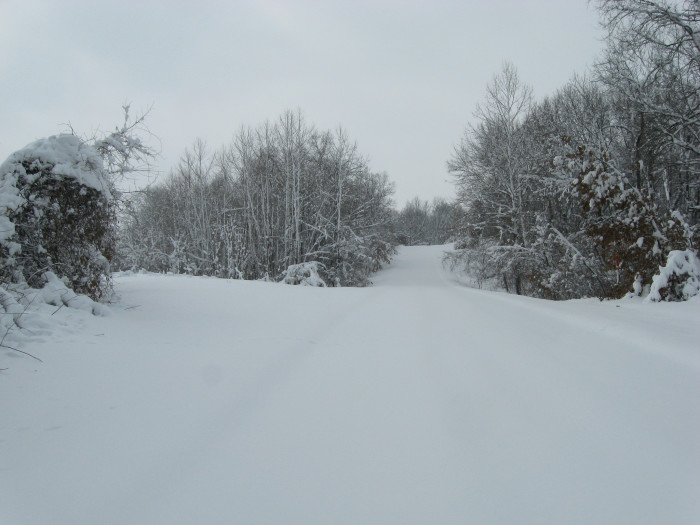 7.Winter Storm in Chilhowee