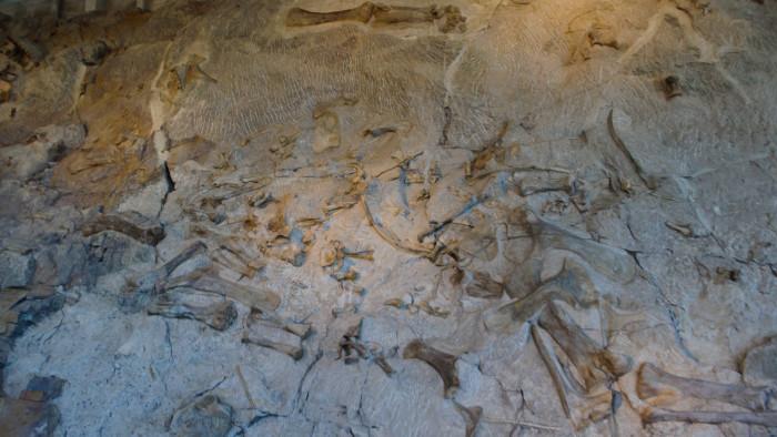 15. Dinosaur National Monument