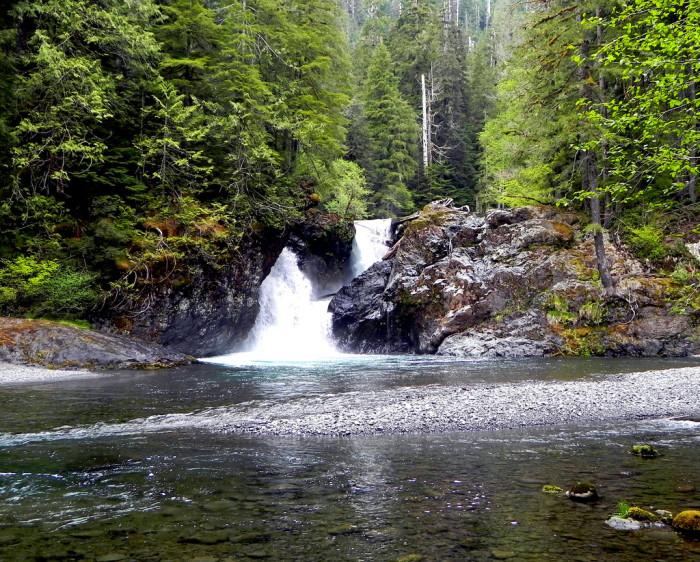 1. Wynoochee Falls